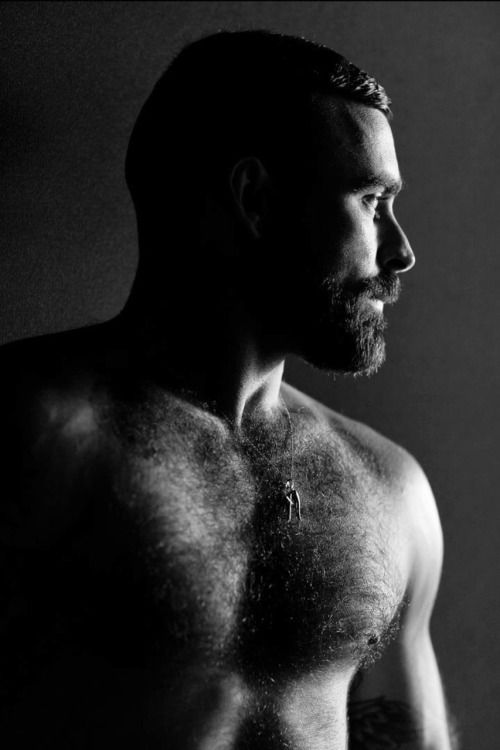 Handsome Hairy Bear