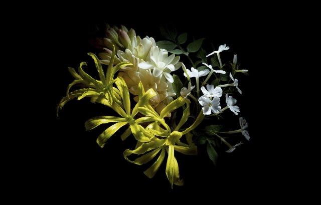 flower00