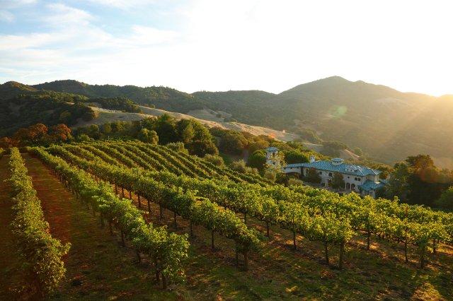 massive-villa-tiny-compared-640-acres-land-around