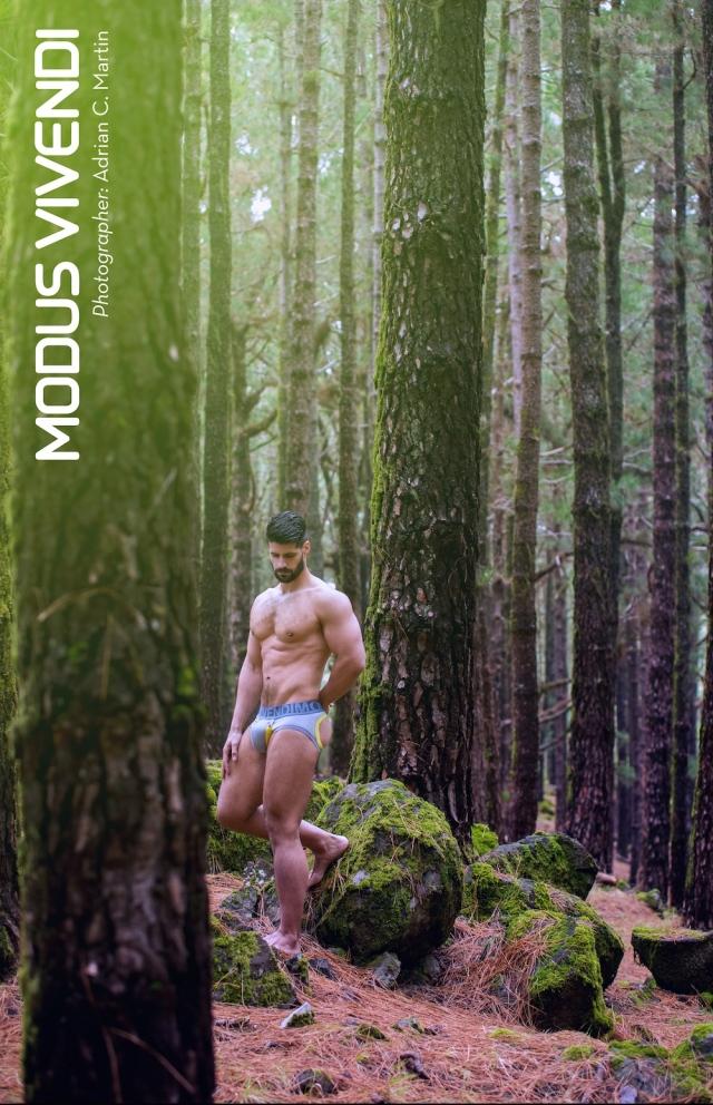 Modus-Vivendi-Bear-Line-06