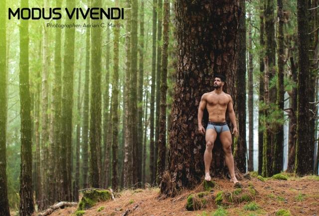 Modus-Vivendi-Bear-Line-08.jpg