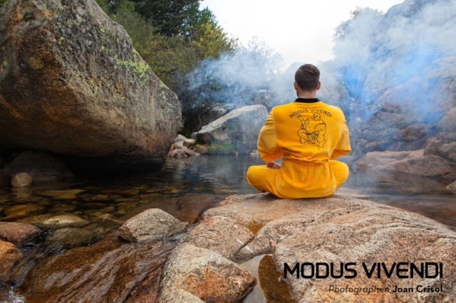 Modus-Vivendi-Buddha-Line-007