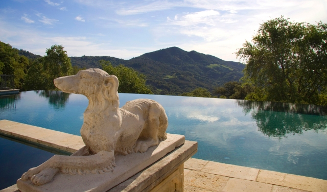 Robin Williams Napa Estate Villa Sorriso Pool 3