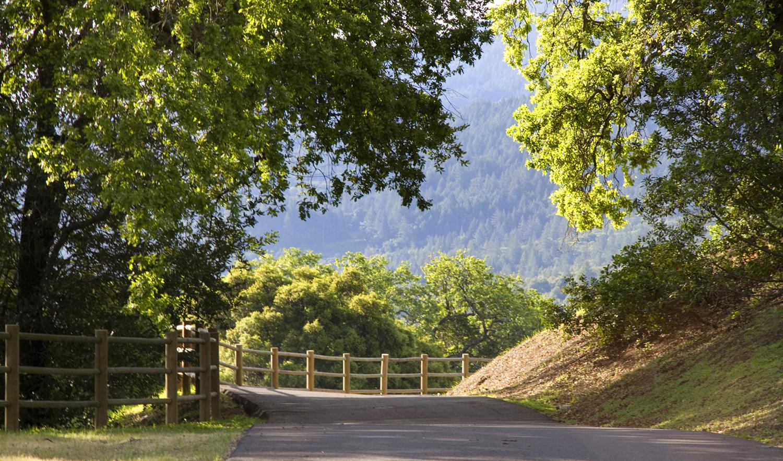 Robin Williams Napa Estate Villa Sorriso Road 1
