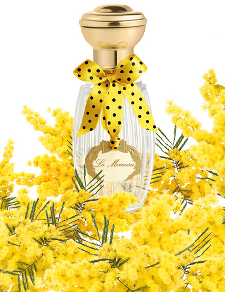 Annick Goutal Le Mimosa.jpg