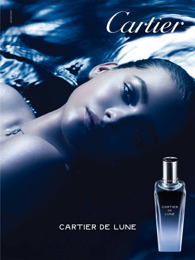 Cartier De Lune Visual
