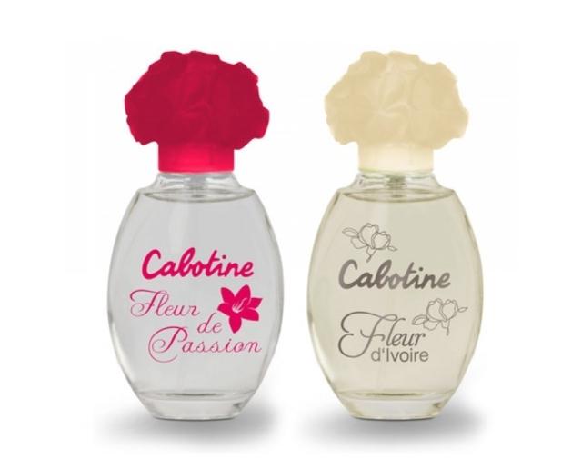 cabotine-fleur-de-passion-78205