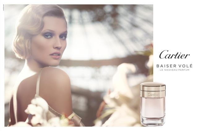 Cartier Baiser Vole Visual