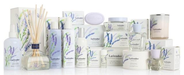 Lavender Group Visual_1.jpg
