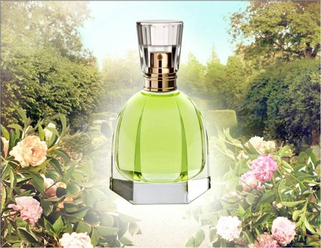 81726KVsb5L._SL1500_Oriflame Lovely Garden Visual Bottle