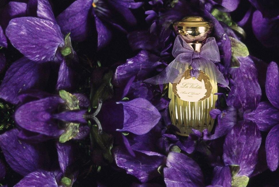 Annick Goutal La Violette Visual