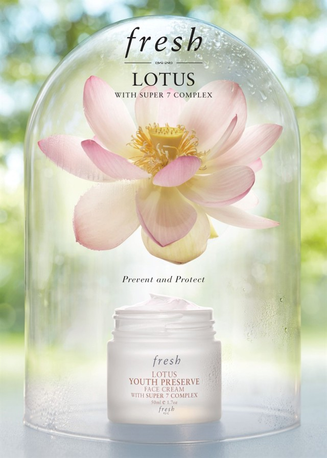 Fresh Lotus Youth Preserve Face Cream Banner