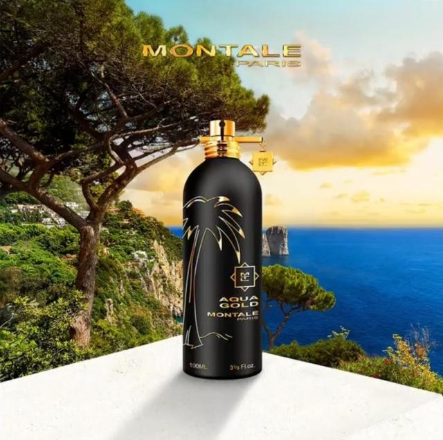 Montale-Aqua-Gold-Banner