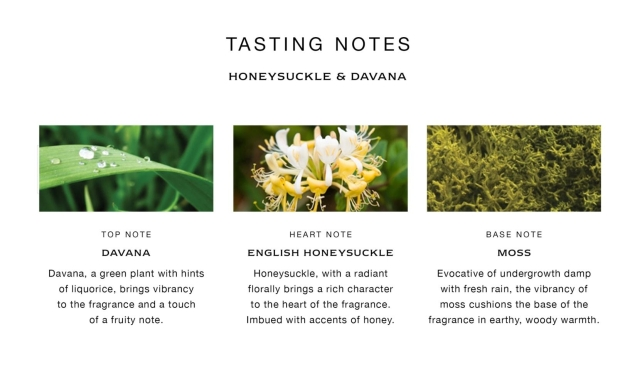 Jo-Malone-Honeysuckle-&-Davana-Notes
