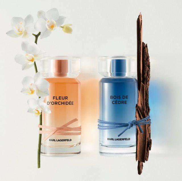 Karl-Lagerfeld-Fleur-d'Orchidee-and-Bois-de-Cedre.jpg