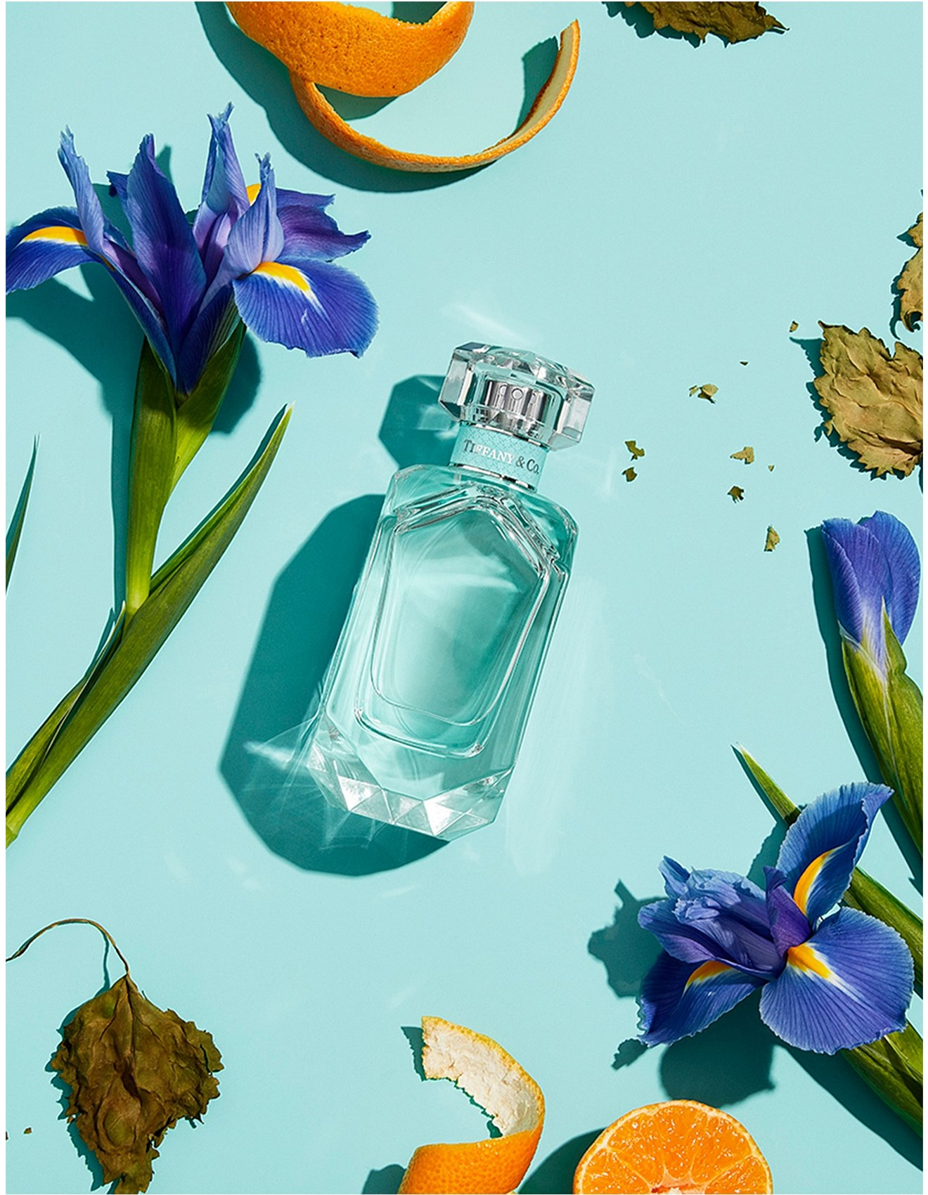 2018-Tiffany-&-Co-Eau-de-Parfum-Holiday-Edition-Banner-07