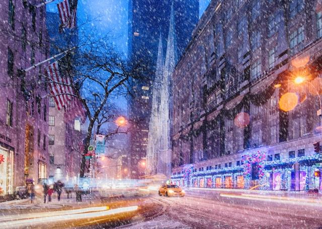 Elizabeth-Arden-5th-Avenue-NYC-Live-Banner.jpg