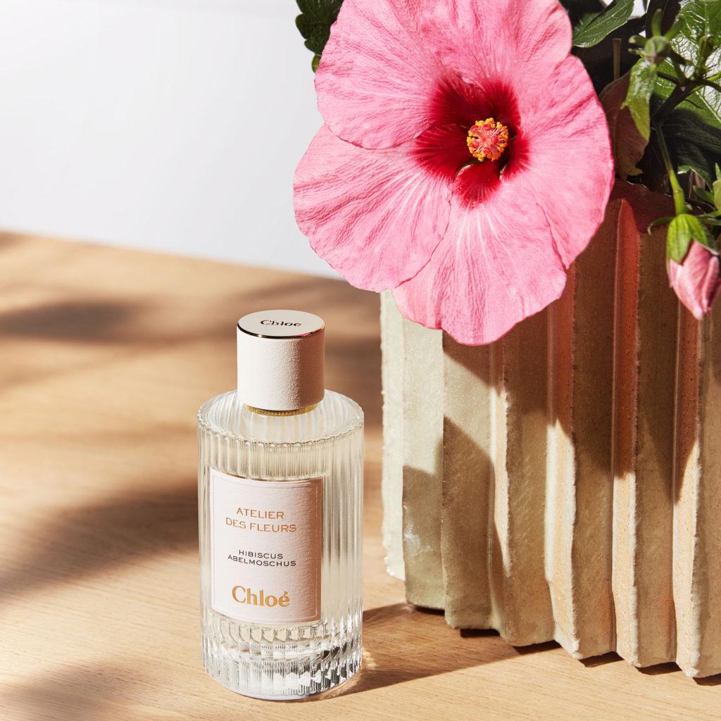 Chloé-Atelier-des-Fleurs-Hibiscus.jpg