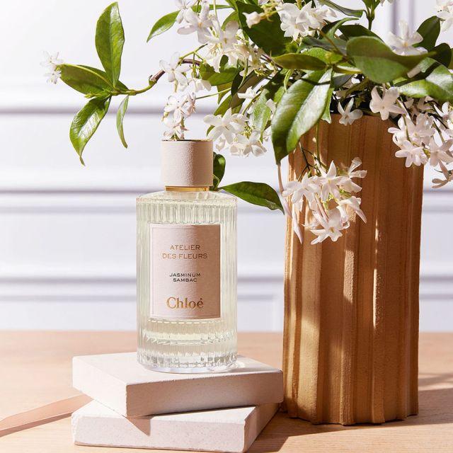 Chloé-Atelier-des-Fleurs-Jasminum-Sambac