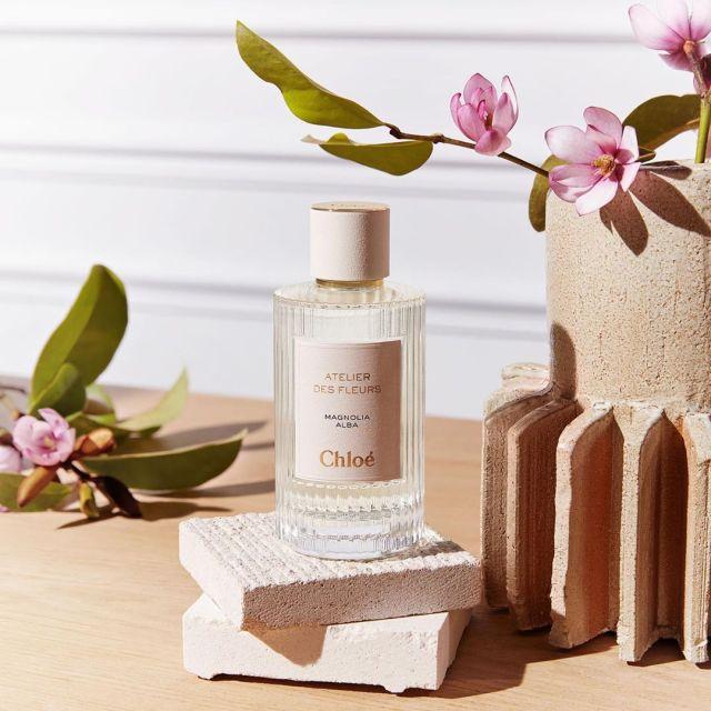 Chloé-Atelier-des-Fleurs-Magnolia-Alba.jpg