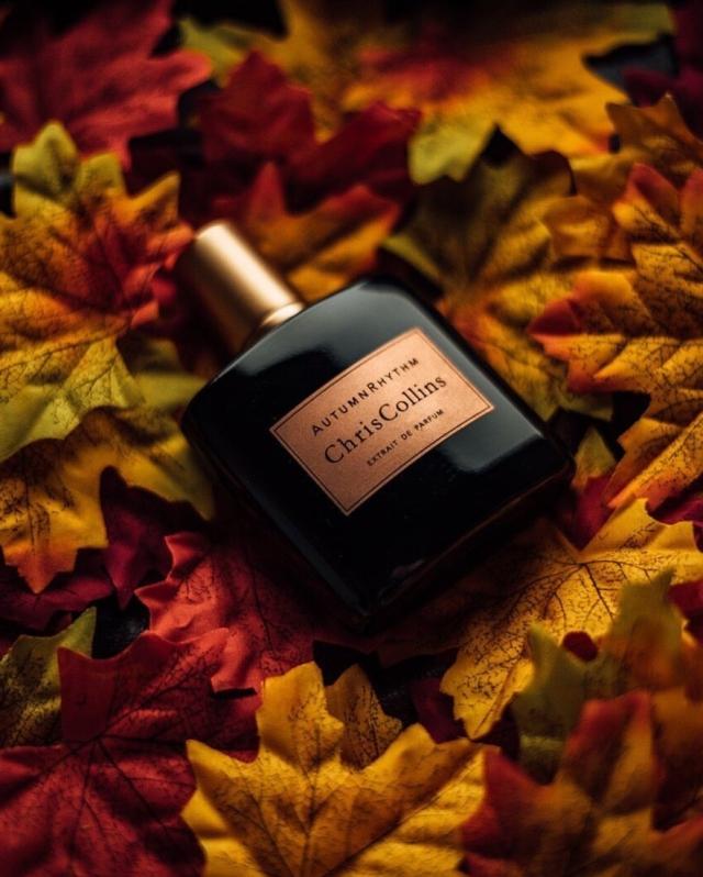 Chris-Collins-Autumn-Rhythm.jpg