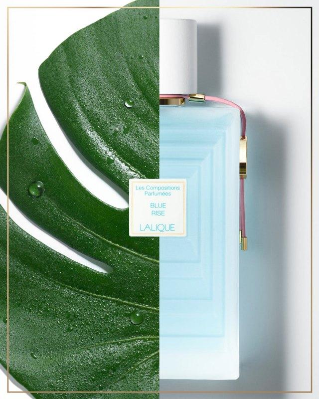 Lalique-Les-Compositions-Parfumées-Blue-Rise-Benner.jpg