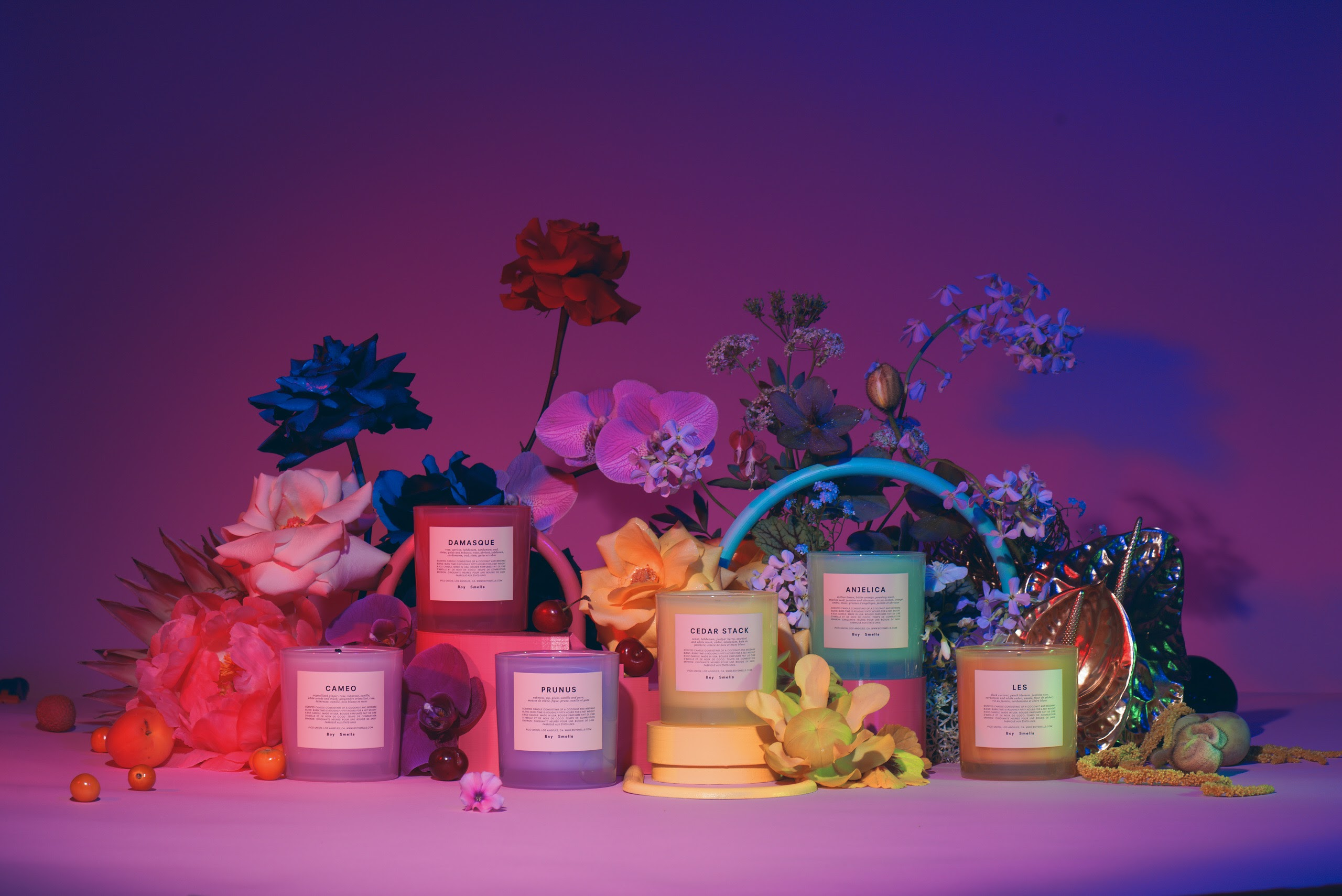 Boy-Smells-Pride-Collection-Visual